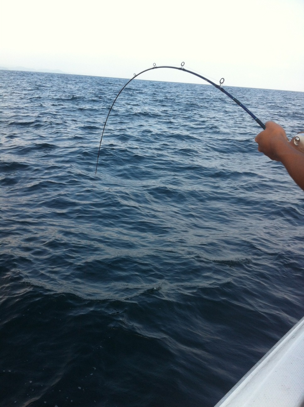 早朝から釣りに行ってきました!!